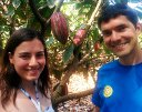 Cacao farming on Oahu