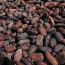 800px-Chocolaterie-nestlé-broc-fèves-cacao-torrefiées.jpg