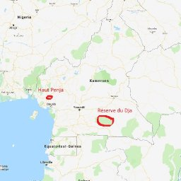 LAd5V-locations-in-Cameroon.jpg