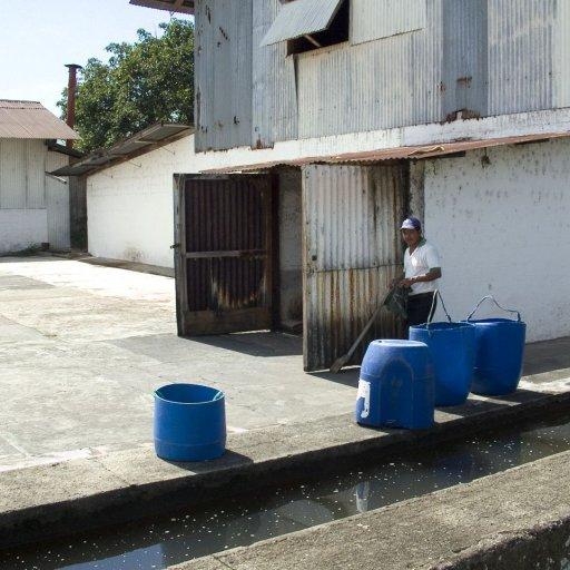 fermentation hut