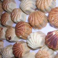 Sprayed Shells