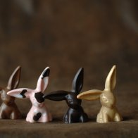 Flop eared bunnies
