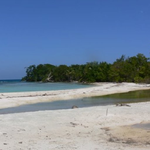 Snake Caye Beach View