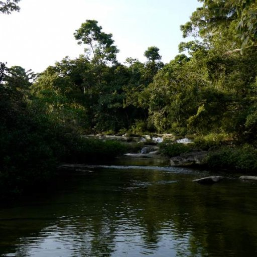 Belize2010-16AboveRioBlancoPool