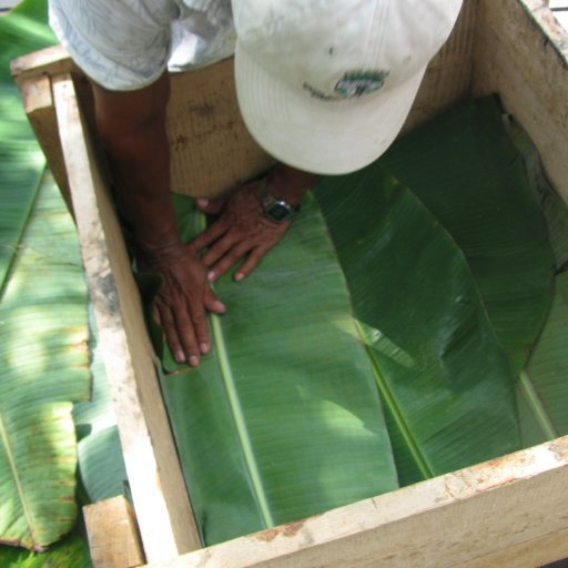 Preparing the Fermentation Box