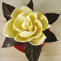 Chocolate Magnolia Blossom