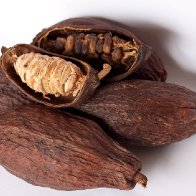 Open and Closed Cocoa Pods with Beans