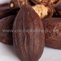 Whole Cocoa Pods