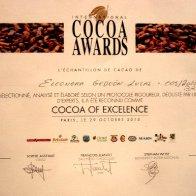 Excellence Award 2010