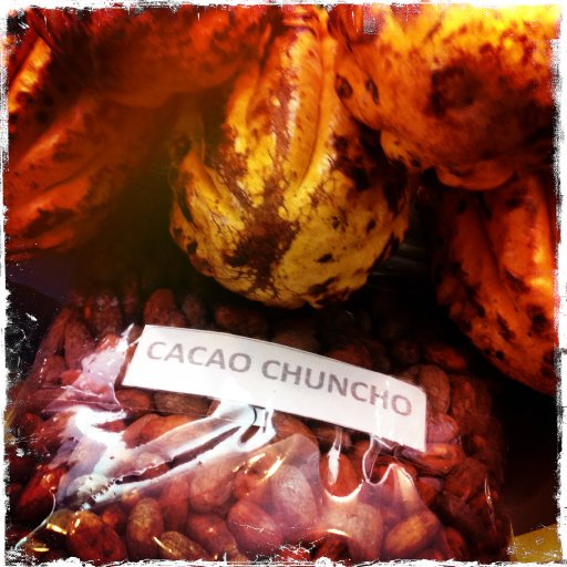 Pod photo - Cacao Chuncho