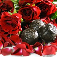 Rose Petal Chocolate Truffles