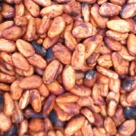 Perfect Cacao beans
