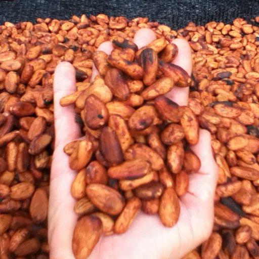 Sundried Talamanca Organica Cacao