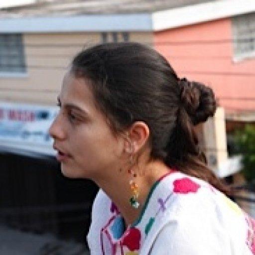 Dolores I. Alvarado R.