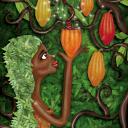 colorchocolate